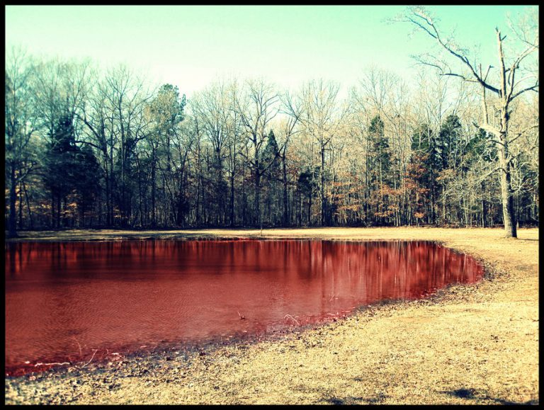 The Bloody Pond