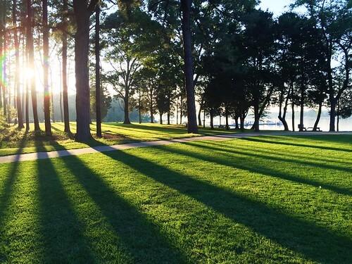 Sunny Sunday Across North Mississippi